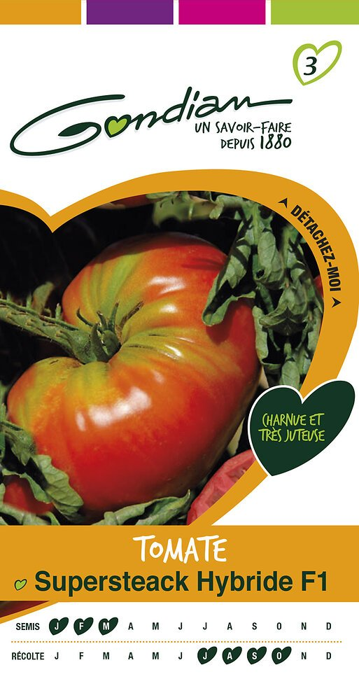 Tomate supersteak hybride f1